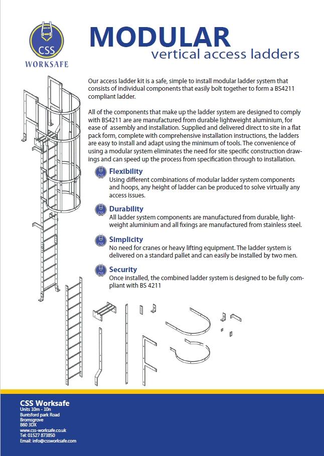 Modular vertical access ladder system